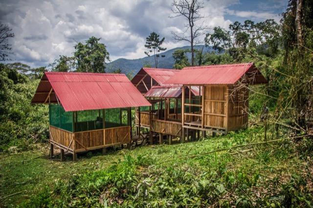 Review Grace Volunteer In Manu Peru 04