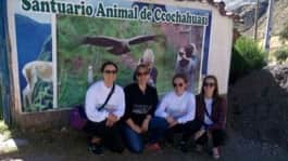 Review Patricia Martinez Volunteer in Cusco Peru at the orphanage program