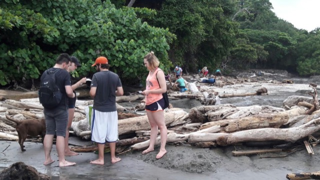 Review Steven Fultz Volunteer in Costa Rica Sea Turtle Conservation Program