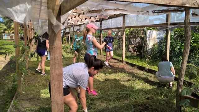 Review Volunteer Marisa Napoli Belize Orphanage - University of Dayton