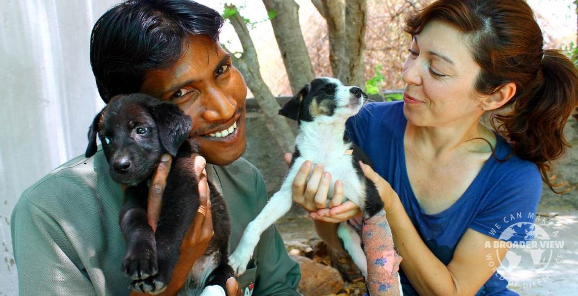 Volunteer in India jaipur Animal Care
